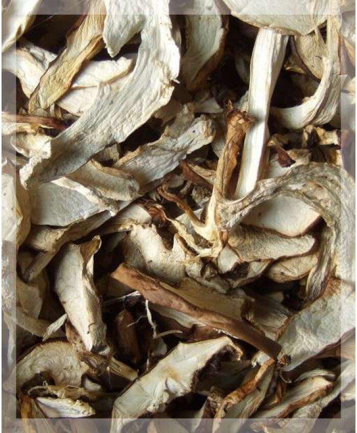 сушеные грибы с алтая