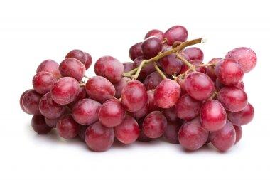 Виноград красный флейм, кишмиш красный — FRUTSNAB